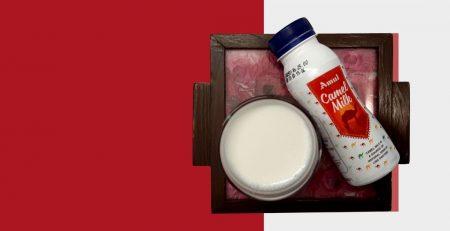 Amul Camel Milk