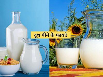 benefits of milk