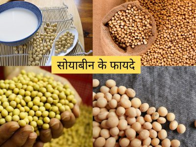 benefits of soybean