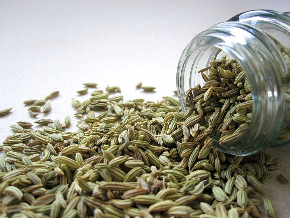 fennel-mishry