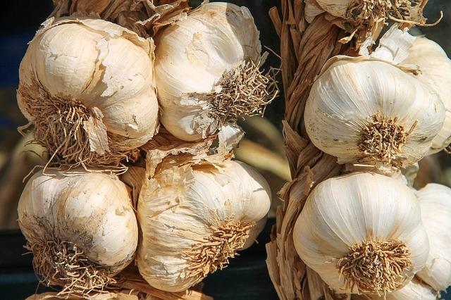लहसुन के फायदे, नुकसान और उपयोग: Garlic (Lahsun) Benefits and Side Effects in Hindi
