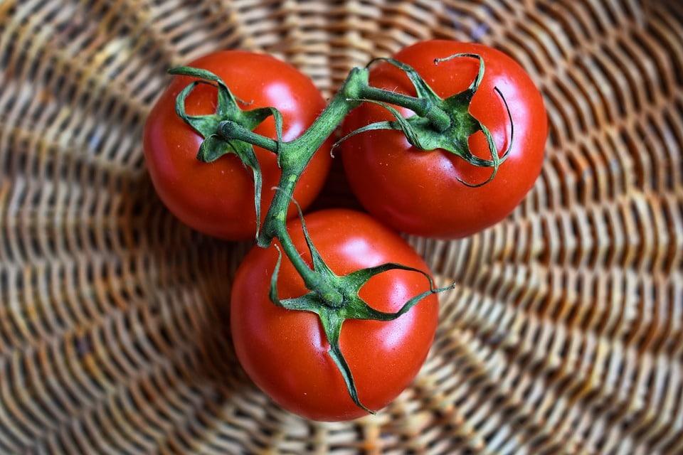 tomato-mishry