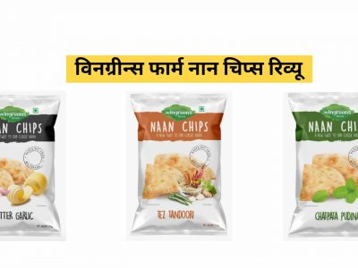 wingreens farm naan chips
